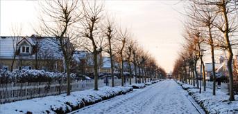 Impressie van het park in de winter 2012